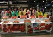 【全農とちぎ】トマト主産県11県が大田市場で合同試食会