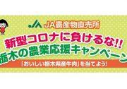 JA農産物直売所「栃木の農業応援キャンペーン」が始まります